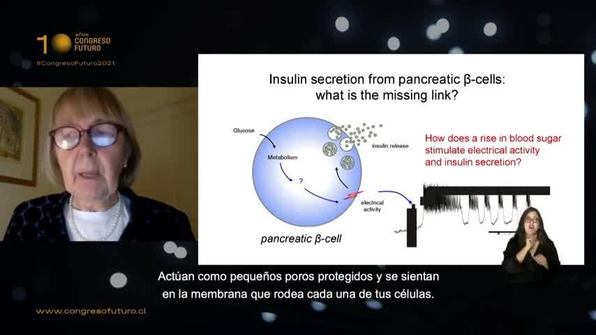 Diabetes: Hacia la comprensión de una epidemia silenciosa
